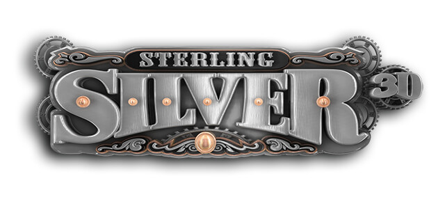 3D Graphics With Sterling Silver Video Slot