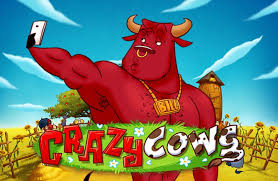 Online Play'n Go Crazy Cows Slot Game – An Overview & Review