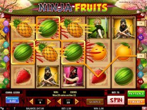 Ninja Fruits Slots Game